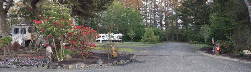 The Driftwood RV Resort And Campground